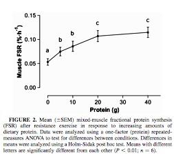 proteinstudy3